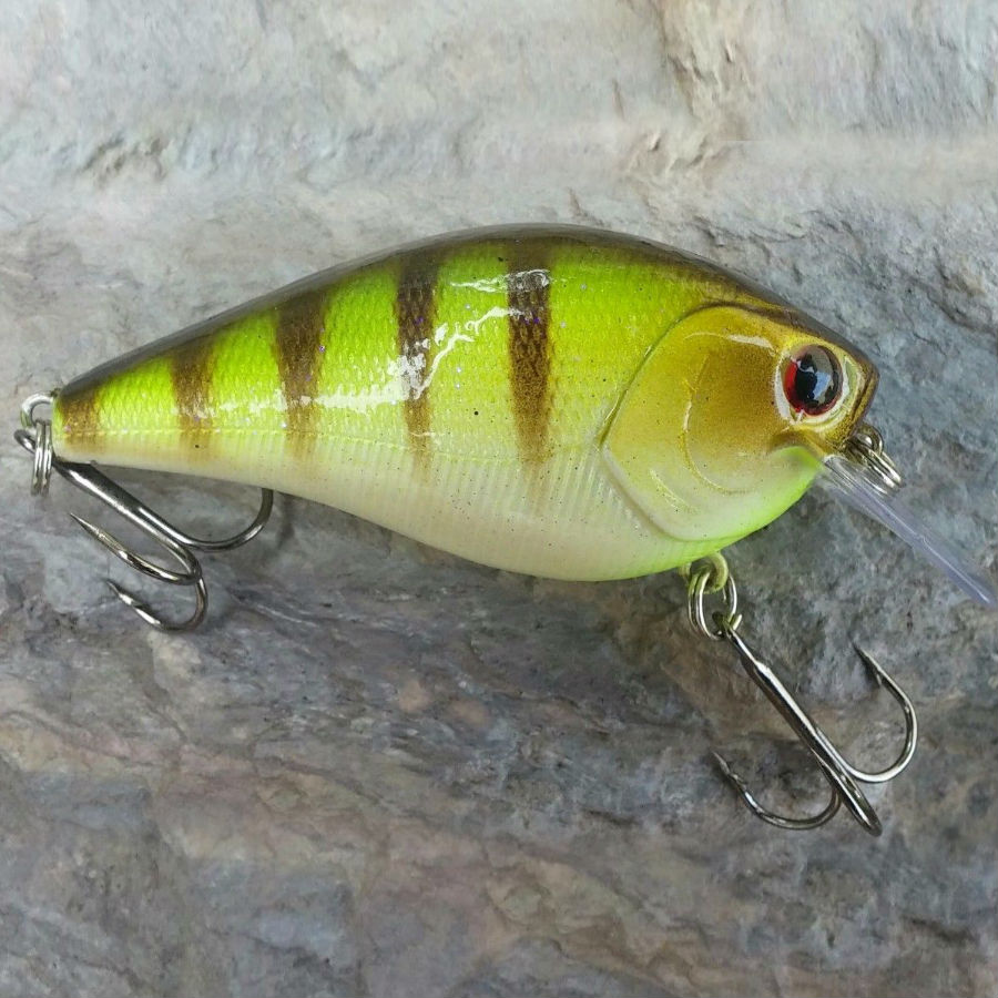 best squarebill crankbait shad blue gill bream