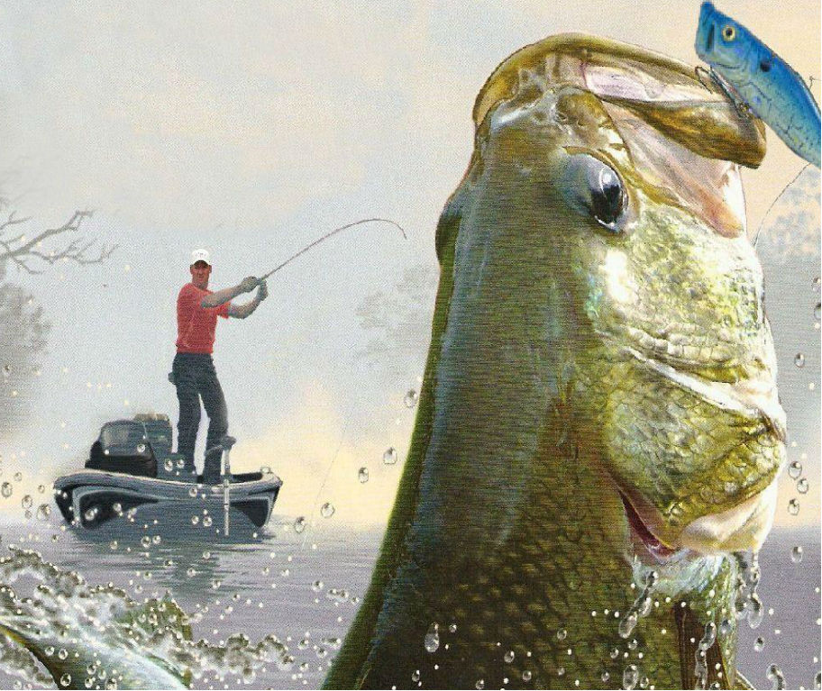 5 bass lures you should header 912x767 2