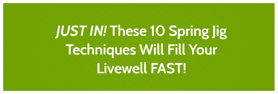 [JUST IN!] 10 Spring Jig Techniques Will Fill Your Livewell FAST!