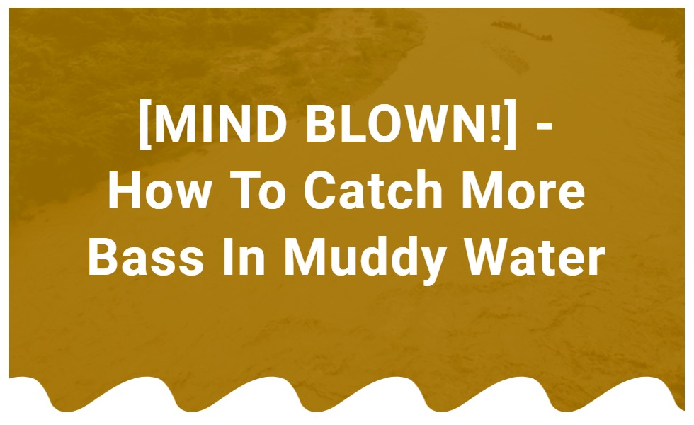 How to catch more bass in muddy water