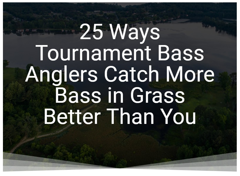 25 Ways Tournament Bass Anglers Catch More Bass in Grass Better Than You