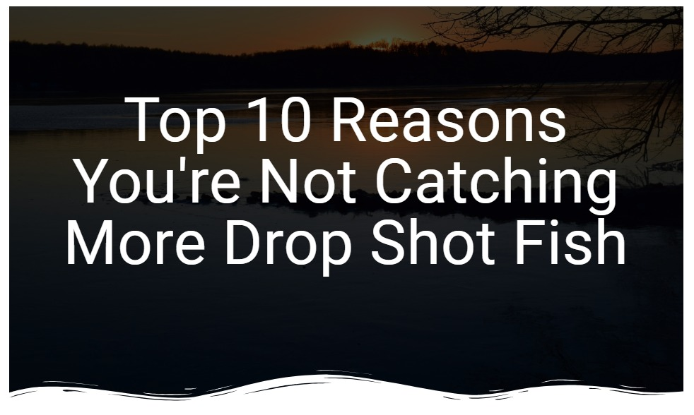Top 10 Reasons You're Not Catching More Drop Shot Fish